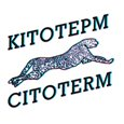 Электродный электрический котел Citoterm 9-12 кВт